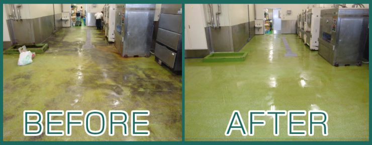 食品工場の床の施工事例 除菌洗剤、建物全般のカビ除去、藻類の除去、クロス・塗装面のヤニ汚れの除去 カビ汚れ除去 洗浄マジック 10シリーズ